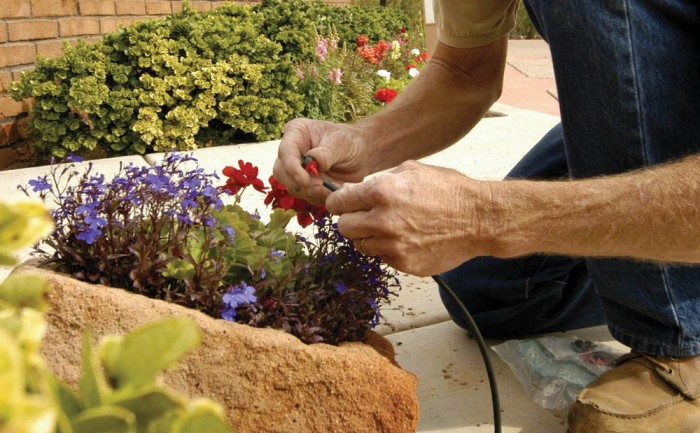 25 Ways to save water & your landscaping during California's historic drought