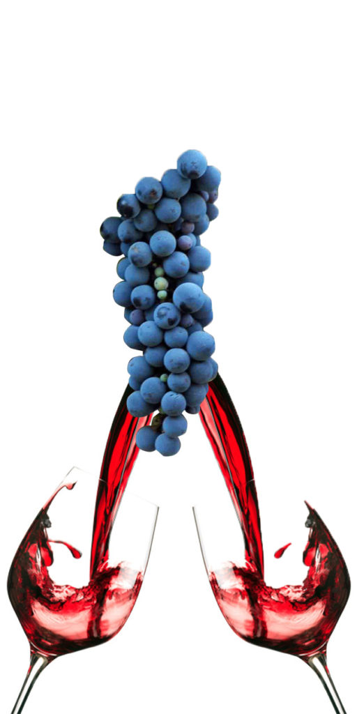 Syrah v. Shiraz: What differentiates these two wines that come from the same grape?