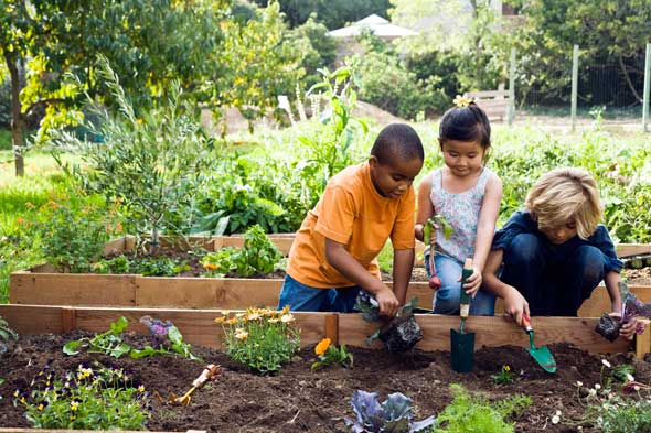 "California students ""go green"" with new environmental programs"