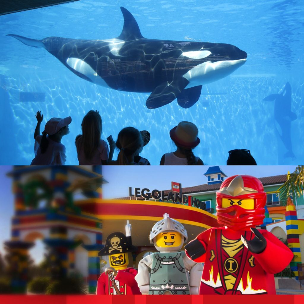 See what's new at SeaWorld, LEGOLAND and more this week on California Life!