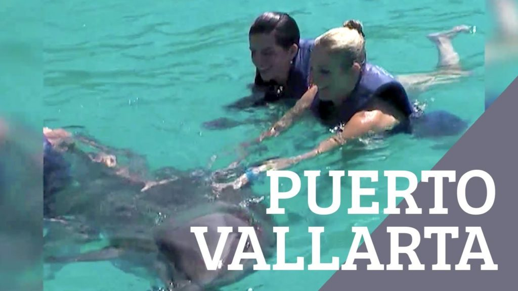 Puerto Vallarta Staycation