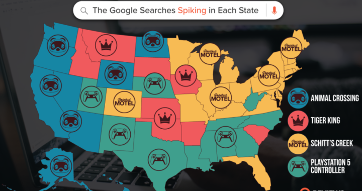 What is Every State Googling During Quarantine