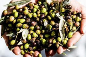 Artisan Olive Orchard to Donate 100% of all Sales in Honor of National Olive Day