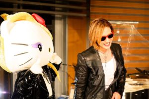 Yoshikitty or Hello Kitty?
