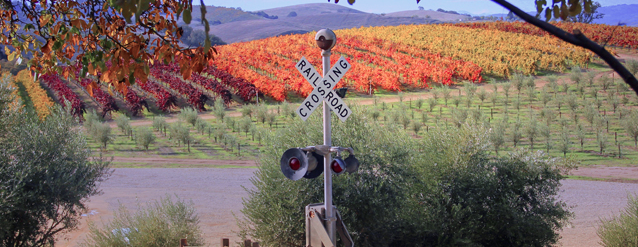 California Life Discovers Unique Ways to Explore Paso Robles Wine Country
