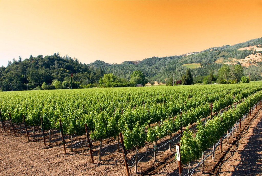 """California wineries celebrate """"Down to Earth Month"""""""