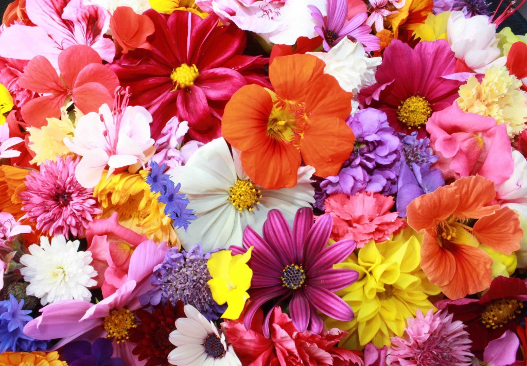 Fun floral arrangements for Spring