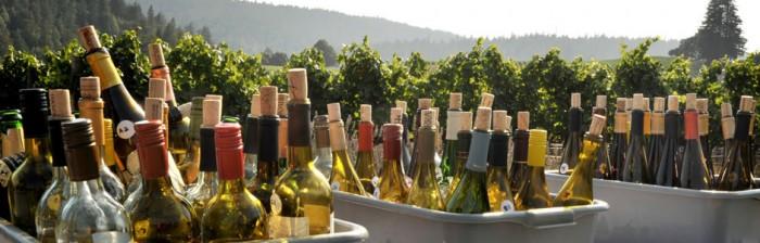 Escape to Mendocino Wine Country