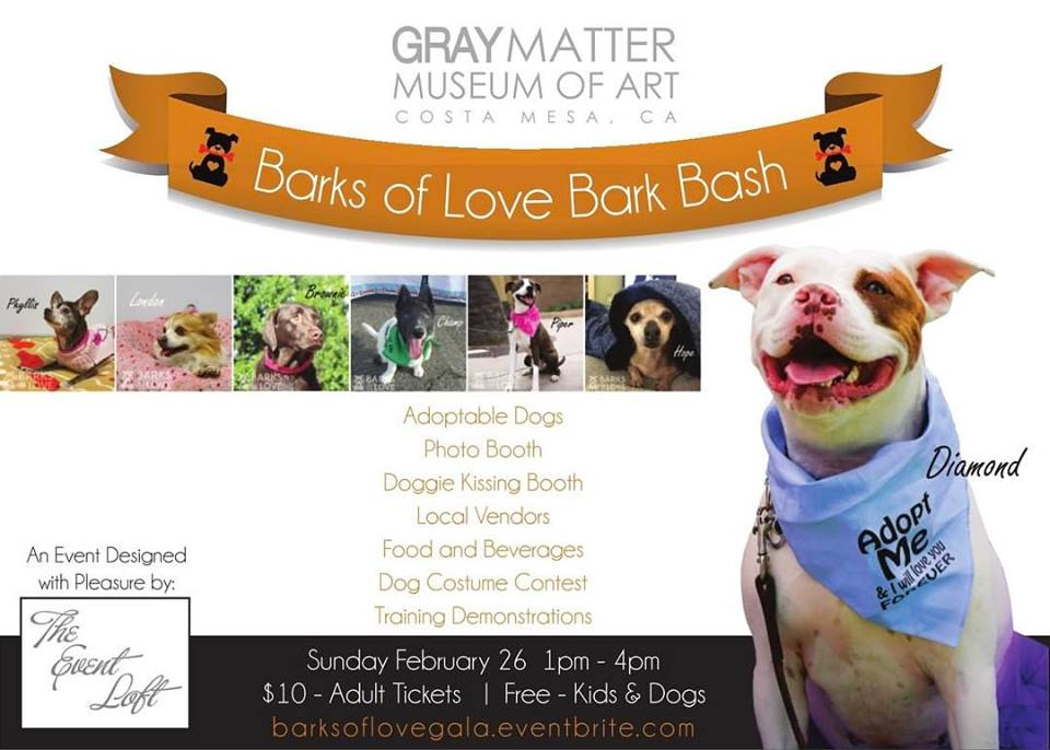 Barks of Love Animal Rescue hosts Bark Bash finding precious pets their forever homes
