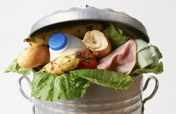 Leftovers in Landfills: How Uneaten Food Impacts the Environment