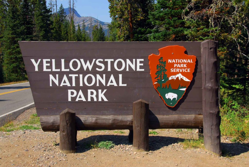 What to do in Yellowstone for One Day.