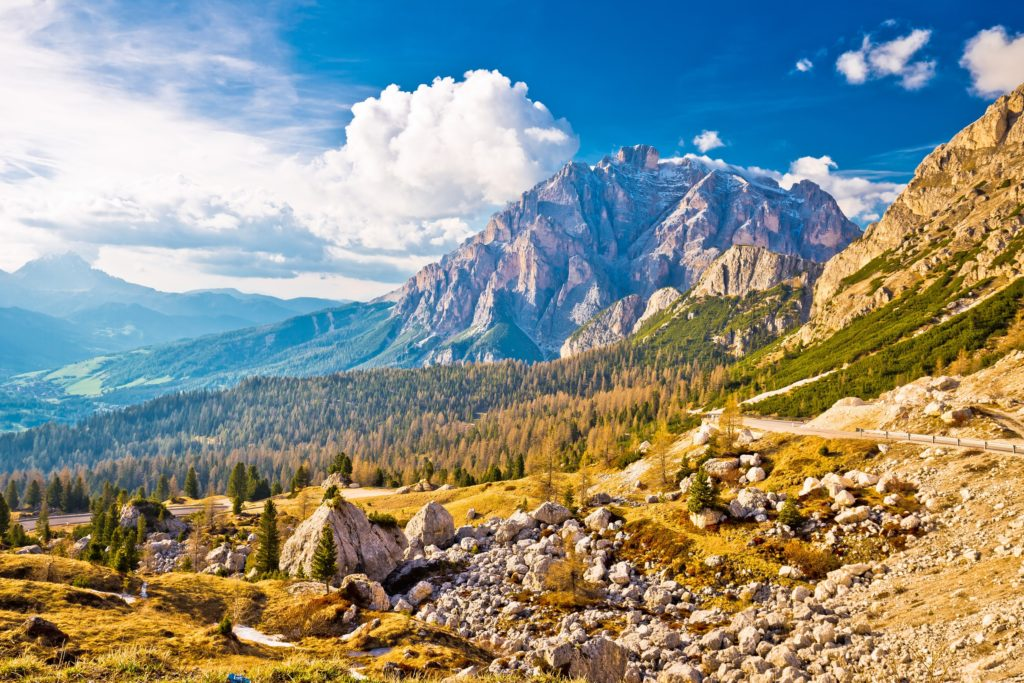 Discover Summer in the Alps and Explore the Charming French Country Side