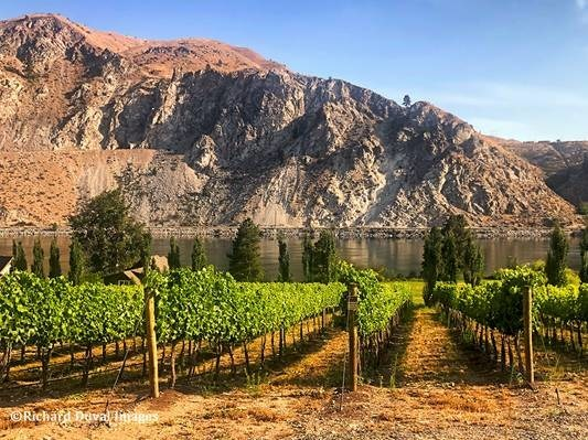 Rocky Pond Estate Winery Adds Accomplished Consulting Winemaker