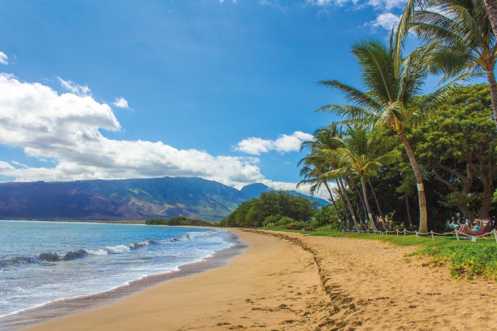 Aloha Now, Travel Later with Hyatt Regency Maui's Virtual Wedding Offer