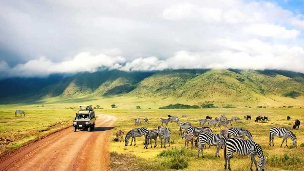 New 2021 Luxury African Safaris by African Travel, Inc.: Going Beyond Bucket List Experiences