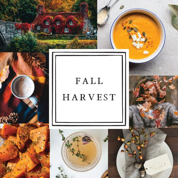 Top 20 Must-Haves To Get You In The Mood For Fall