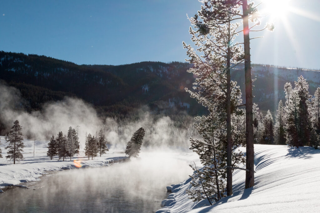 Scenic Safaris Offers Snowmobile, Snow Coach Excursions in Yellowstone National Park for 2020-2021 Winter Season