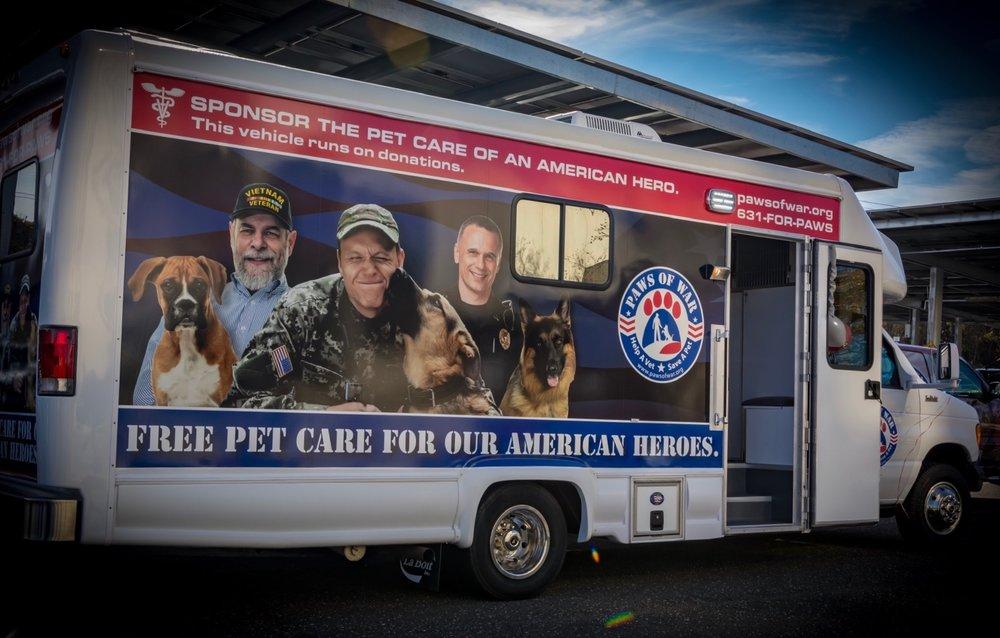 Soldier Seeks Help in Rescuing Vulnerable Dog Used in Fights Overseas