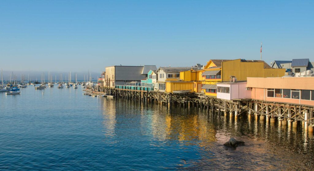 Spotlight: Monterey