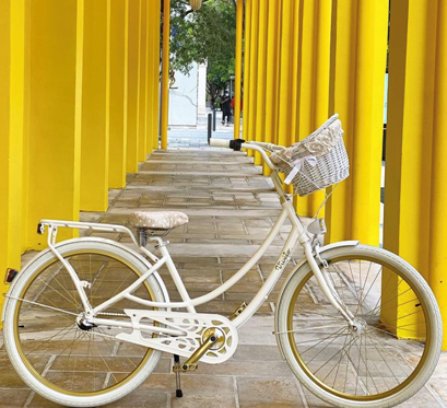 Cruise the Beach on a Cruiser Bike Designed For You, By You!